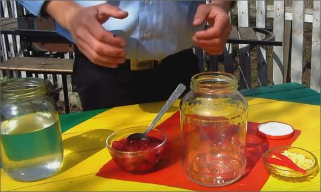 Рецепт настойки из замороженной малины - компоненты