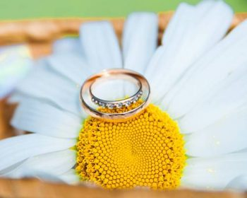 Поздравления с Муслиновой свадьбой