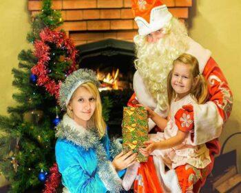 Дед Мороз и Снегурочка на дом в СПб